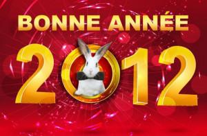 Bonne année 2012  bonne-année-2012-copie1-300x198